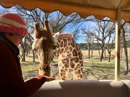 me with giraffe