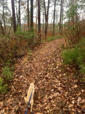 Hops hikes at Atlanta State Park
