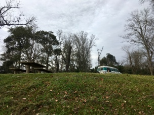 overnight at Martin Dies, Jr. State Park