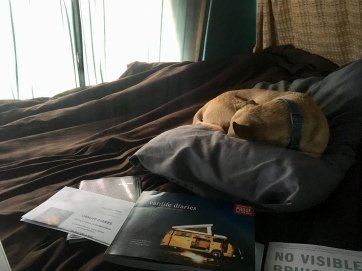 meta #vanlife and one comfy, snoring dog