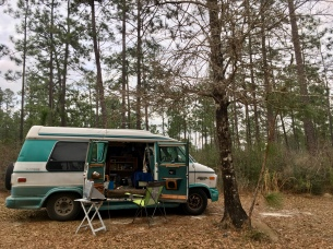 home for the night, De Soto National Forest