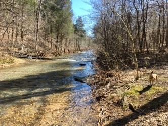 Little Swan Creek