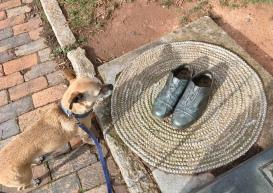 """Dixieland"" - bronze replica of Thomas Wolfe's shoes"