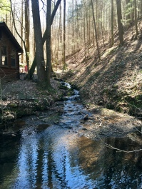 Mulberry Gap: a magical place