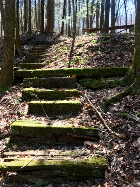 steps at the campground