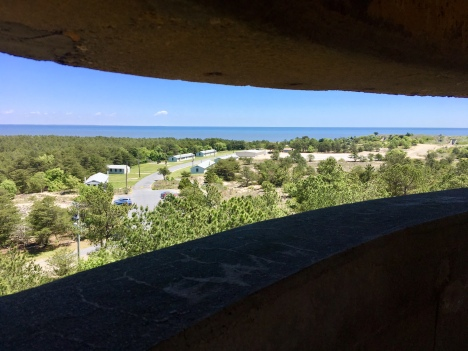 view of barracks and guns from WWII observation tower, Fort Miles, Cape Henlopen State Park