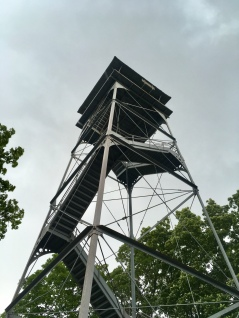 observation tower: I climbed it in driving rain, Hops did not