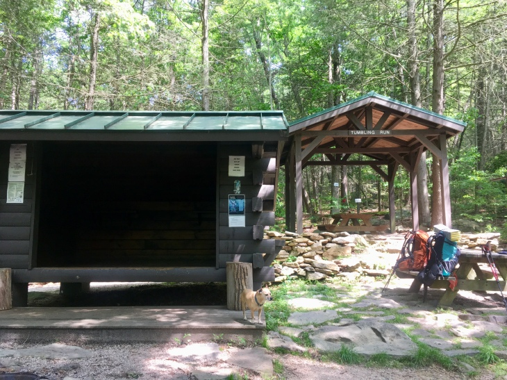Tumbling Run shelter