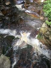 looking straight down at Elakala Falls