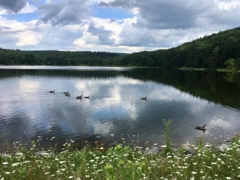 Spruce Knob Lake