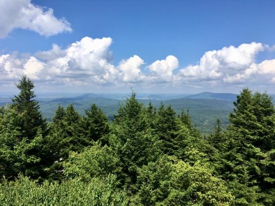 many vistas